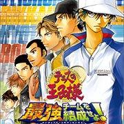 网球王子3 最强队伍结成(日版)