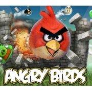 愤怒的小鸟(美版)
